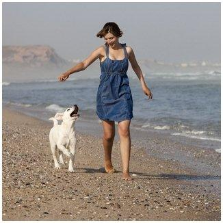 טיפים לאילוף כלבים עצמי-LADOG