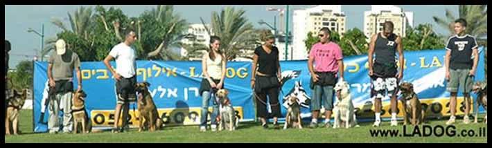 קבוצת אילוף כלבים של LADOG